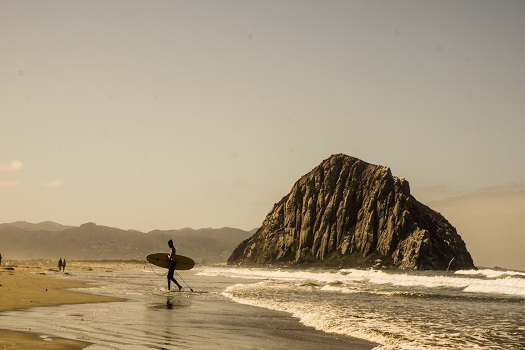 Reasons You Should Get Excited About Your Trip to Morro Bay in Morro Bay, CA