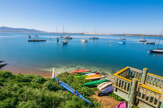 Tips to Make the Most of Your First Trip to Morro Bay in Morro Bay, CA