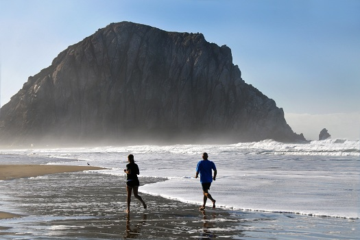 Best Souvenirs to Get During Your Morro Bay Trip in Morro Bay, CA