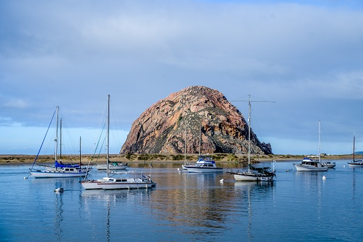 Best Way to Experience the Local Culture when I Visit Morro Bay? in Morro Bay, CA
