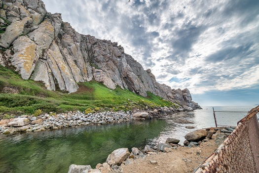 Best Places to See Some Wildlife in Morro Bay in Morro Bay, CA